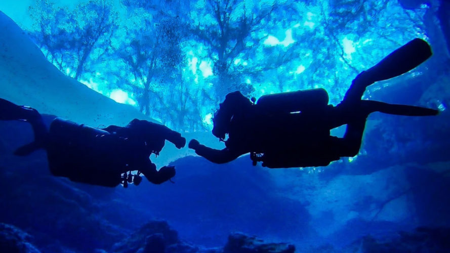 2 scuba divers fist bumping under water in florida