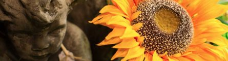 sunflower and antique statue at live oak suwannee shop