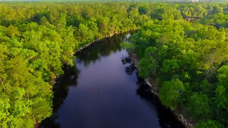 aerial view of suwannee river and surrounding nature