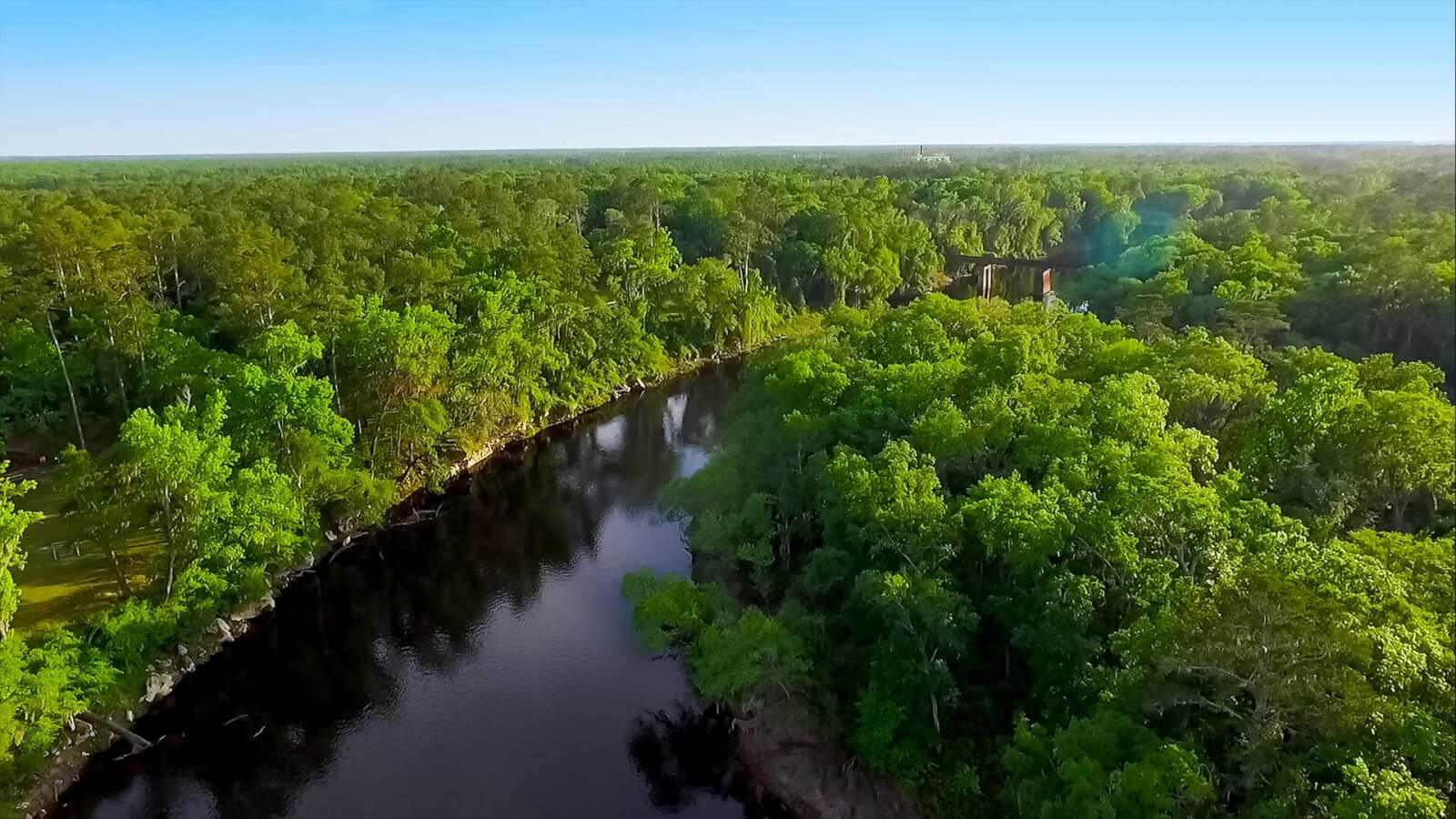 Aerial view of the Suwannee River