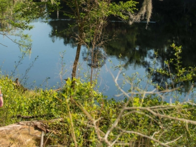 Couple looking at the river from Suwannee River State Park hiking trail